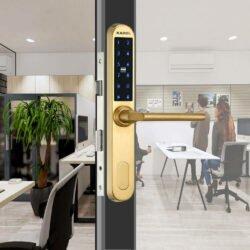 Ổ khóa vân tay cửa sắt Kadol KD 300 màu vàng